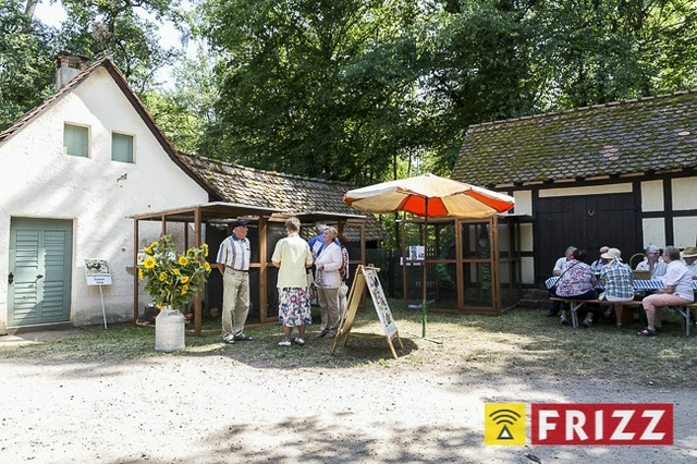 2015-07-11 Scheonbusch - 77.jpg