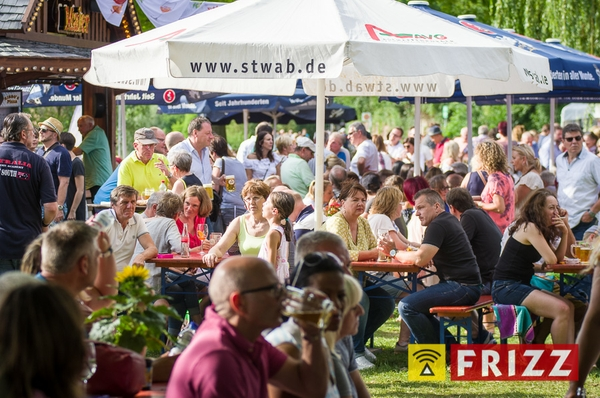 dalbergfest-2017-07-30-1436.jpg