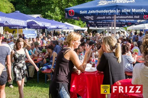 dalbergfest-2017-07-30-1454.jpg