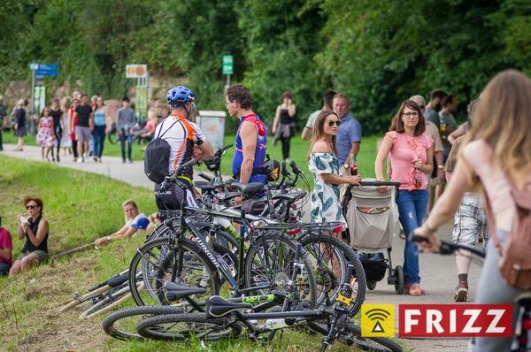 dalbergfest-2017-07-30-1477.jpg
