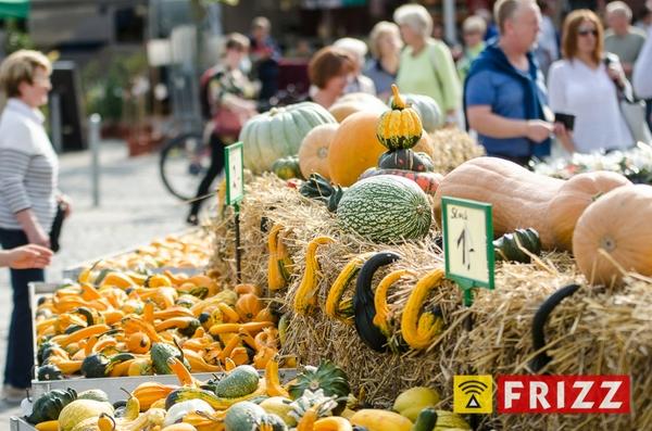 Marktfest_300917-017.jpg