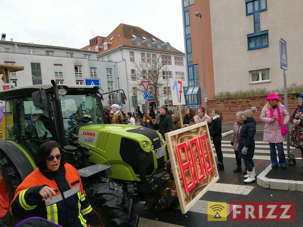 2018-02-11_faschingsumzug-innenstadt-ab-7.jpg