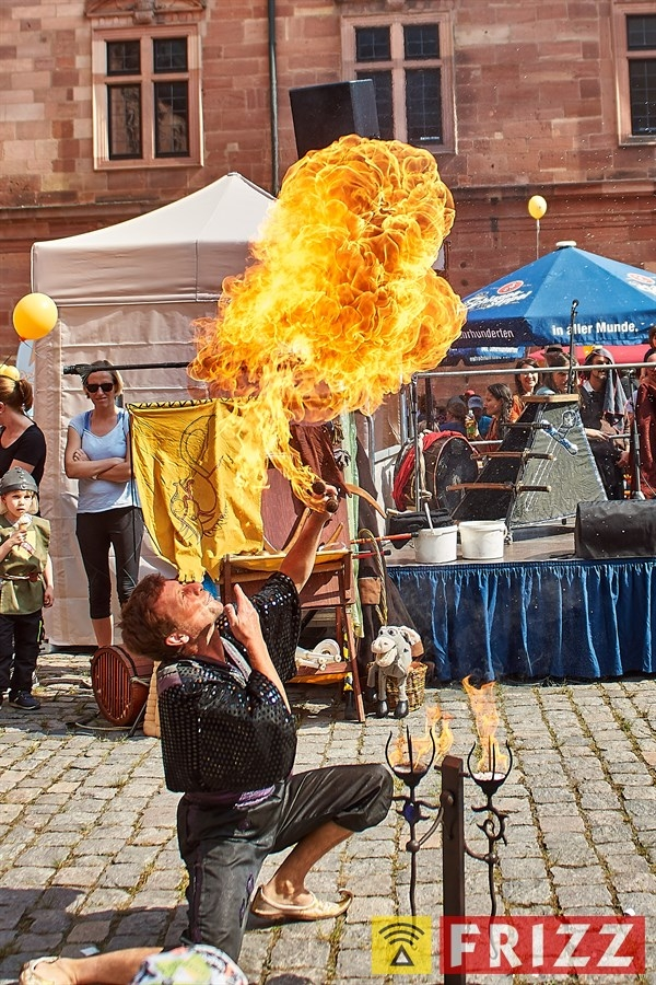 18-05-12_schlosshof_mpsritterfest_02.jpg