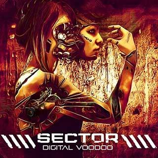 Sector: Digital Voodoo