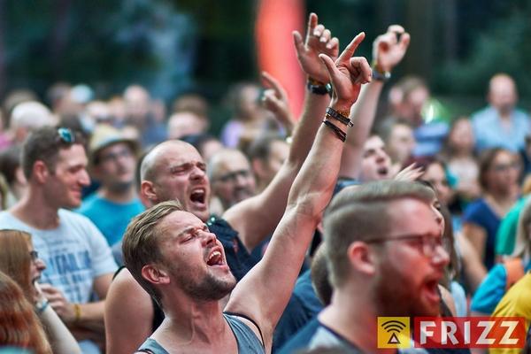 muehlbergfestival2018_0073.jpg