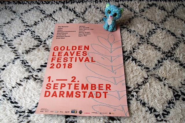 Neverending Vatertag #56: Festival