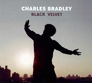Charles Bradley_Black Velvet