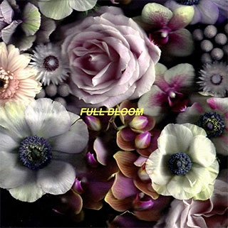 Alpines_Full Bloom