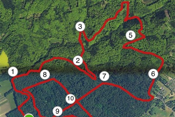 Canicross Strecke