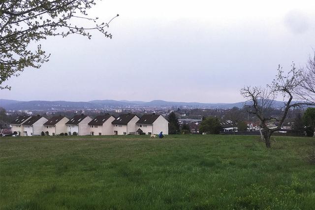 Strietwald