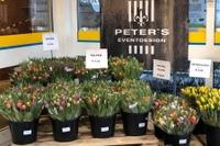 Peter's Floristik