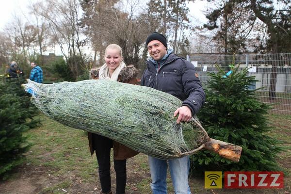 2016-12-10_christbaumverkauf-tierheim-ab-11.jpg