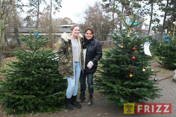 2016-12-10_christbaumverkauf-tierheim-ab-12.jpg