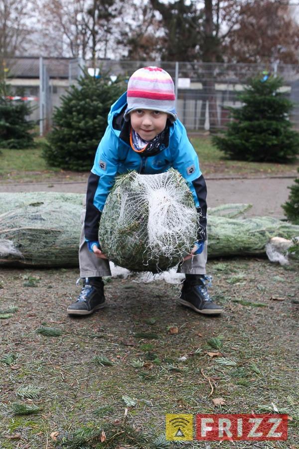 2016-12-10_christbaumverkauf-tierheim-ab-18.jpg