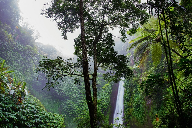 Natur – Wasserfall